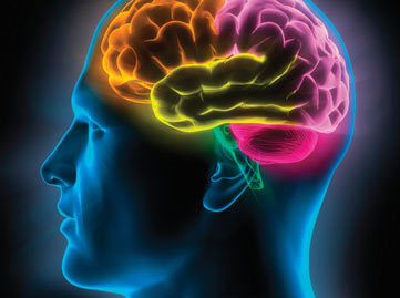 improve and optimize your memory