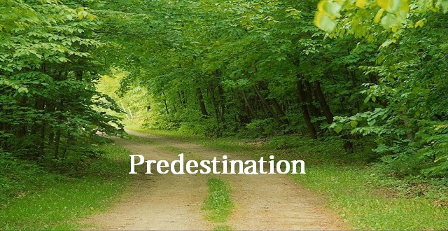 Why Believe in Predestination?