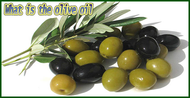 What is the olive oil?