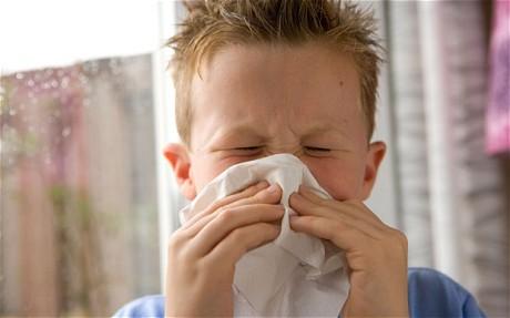 sneeze_1764739c